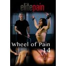Wheel of Pain 14